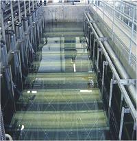强化生物技术(MBR)